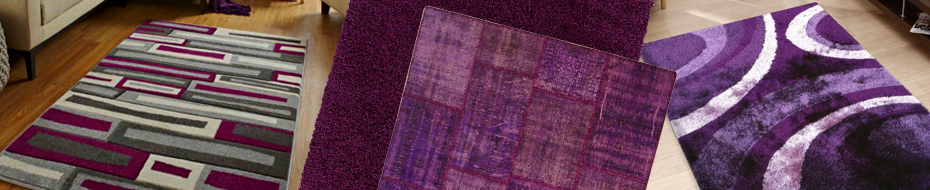 Purple Rugs