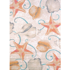 United Weavers Of America - Regional Conecepts Stars And Shells Natural