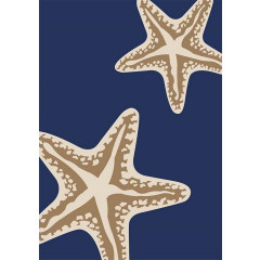 Central Oriental - Tributary Sea Star Duo Navy-Ivory