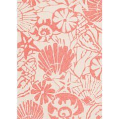 Central Oriental - Sanibel Seabottom Coral-Cream